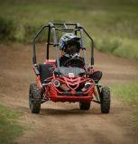 Go-kart Met fouten van het Veilige Gas van jonge geitjes het Mini50cc 49cc Mini