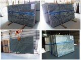 China-eleganter silbernes Grau-Granit, Bodenbelag-Fliese-Granit für Hotel oder Landhaus