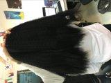 Gli stili di capelli nobili del cavallino di Yaki è ad uno sconto