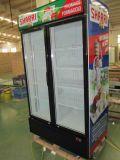 Congélateur droit commercial d'étalage de porte de R404A deux pour le coca-cola