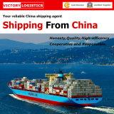 De Agent van de Vrachtvervoerder/Verschepende Agent Logistics/Shipping in China