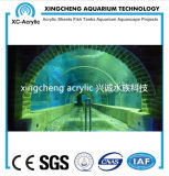 Túnel del acrílico del proyecto de Oceanarium