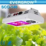 O espetro cheio da saga cresce a flor que o diodo emissor de luz de 200 watts cresce a luz