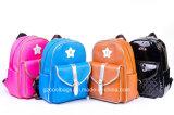 (CL4002) Verschiedene Farben-Kursteilnehmer-Form-Freizeit-Beutel-täglicher Rucksack