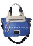 熱い販売の方法Hightの品質(BS13607)のナイロンハンド・バッグ