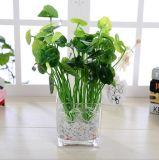 Decoración alta del hogar del florero del florero de cristal claro al por mayor