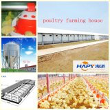 Prefab Steel StructureのChicken Houseの自動Poultry Equipment