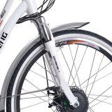 """ E-Bicicleta de la caja de batería del portador de la parte posterior de la bici de la energía del Li-ion 26 (LN26C07)"