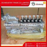 Pompa della benzina genuina originale di alta pressione del motore diesel 5301908