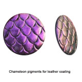 Pigmento de la pintura del camaleón, colores de cuero de la capa