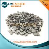Extremidades cubiertas con bronce del carburo de tungsteno de la fabricación para la herramienta de corte K10 K20