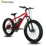 Pedal-Vorlagen-elektrisches Fahrrad-Fahrrad 350W