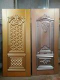Кожа двери низкой цены стальная с популярной конструкцией