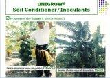 フルーツの植わることのUnigrowの生物有機肥料