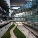 vidro ultra desobstruído do vidro de 12mm/flutuador para paredes de Building&Curtain