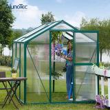 도매 원예식물 녹색 집