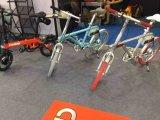 2017 bicicleta elétrica esperta quente En15194 Ebike esperto da venda 36V 250W