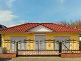 Puerta de desplazamiento de múltiples funciones residencial/comercial de la calzada del hierro labrado