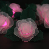 Luzes da bateria do diodo emissor de luz das luzes do diodo emissor de luz de Rosa e de luz da corda das folhas