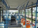 Sede di plastica poco costosa del bus della città da vendere