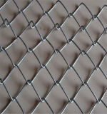 Загородка звена цепи звена цепи Fence/PVC Coated (Anping)