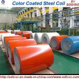 -Prepintado galvanizado recubierto de acero de la bobina / bobina de acero de color