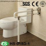 Barra di gru a benna della guida di Toile di handicap della stanza da bagno di sicurezza