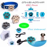 Mini GPS Tracker van Waterproof 2g Pets met IP66 Waterproof (V30)
