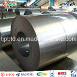Профессиональная плита поставкы S350gd+Z высокопрочная стальная гальванизировала стальную катушку