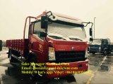 Sinotruk HOWO 4X2 camion del carico da 10 tonnellate con LHD/Rhd