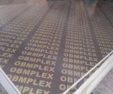 Madera contrachapada impermeable exterior del precio competitivo con buena calidad