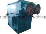 Большой/среднего размера высоковольтный трехфазный асинхронный двигатель Seriesy/Yks/Ykk разбивочное Heigth от 355mm-1000mm