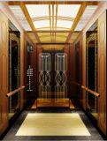 Ascenseur approuvé de passager de la CE avec la technologie du Japon
