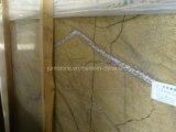 Conception Tropical Rainforest Brown Marble Slabs pour Flooring Tile