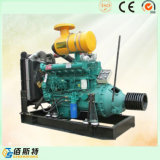 De Kleine Dieselmotor van de Machine van de macht met Koppeling
