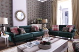 نمو أسلوب [أمريكن] يعيش غرفة أثاث لازم حديثة بناء أريكة