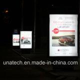 Visualización de LED de aluminio al aire libre o de interior del rectángulo de los media de publicidad