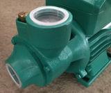 pompe électrique de l'eau de surface 0.37kw/0.55kw/0.75kw pour l'eau propre (QB60/QB70/QB80)