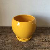 Bello POT di ceramica dell'interno giallo