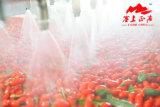 De Bes van Goji van de Specialiteit van Ningxia met Hoge Reputatie Wereldwijd