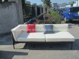 Sofa chinois de rotin de meubles réglé avec le Tableau de Teakwood