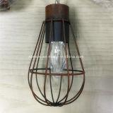 Decoratieve Lamp van de zonne LEIDENE Kooi van de Tuin de Uitstekende (RS1007)