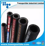 Fornitore idraulico del tubo flessibile 4sp/4sh di spirale del filo di acciaio