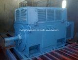 Motore elettrico ad alta tensione dell'anello di contatto del rotore di ferita di serie di anno Yrkk