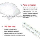 Rectángulo ligero delgado doble de las caras LED de las varias tallas