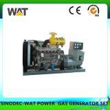 serie de 150kw Deutz de conjunto de generador del gas de la biomasa