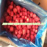 2016 새로운 작물에 의하여 언 IQF는 딸기 열매를 맺는다