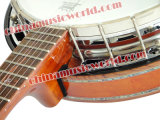 Afanti Hot Sell Banjo (ABJ-95)