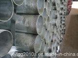 Tubo de acero galvanizado de la sección hueco