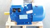 Motor la monofásico del comienzo del condensador de Yc (1HP 2HP 3HP 4HP 5.5HP 7.5HP)